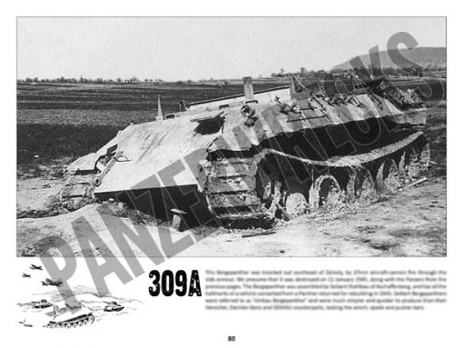 Panzerwrecks 20: Ostfront 3 - WW2 Lake Balaton Panzer wrecks book. Bergepanther