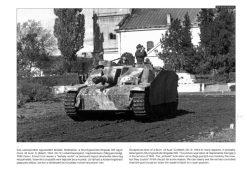 Sturmgeschütz III on the Battlefield 3 - Sturmgeschütz III tank book