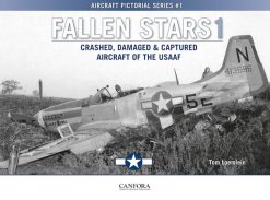 Fallen Stars 1 - Crashed, Damaged & Captured Aircraft of the USAAF